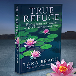 Tara Brach Website and Book Design